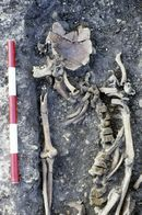 Human skeleton from Beddington Roman villa