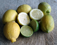 Scurvy was a terrible killer of seamen, and the disease was only eradicated around 1800 by the use of lemons and limes